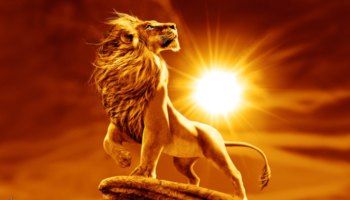 Кадры из фильма Король лев фильм